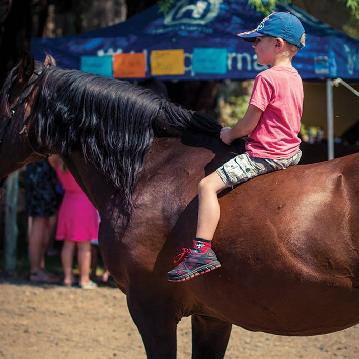 Horse rides at Broadwater River
